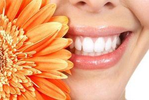 ромашка от запаха изо рта